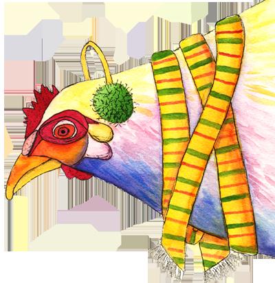 chicken in scarf