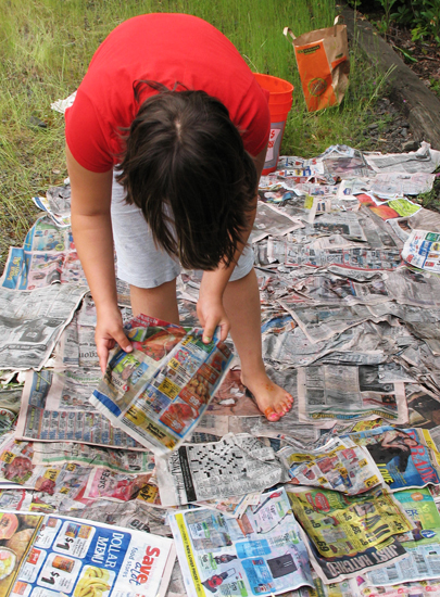 Adding wet newspaper