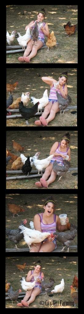 jordan-feeds-chickens-small