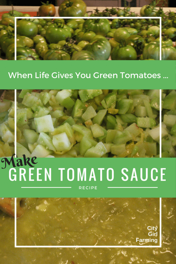 For those times, at the end of gardening season, when you're overflowing with green tomatoes, here's a great recipe (that's very versatile for lots of good food). Easy to make and tasty too!