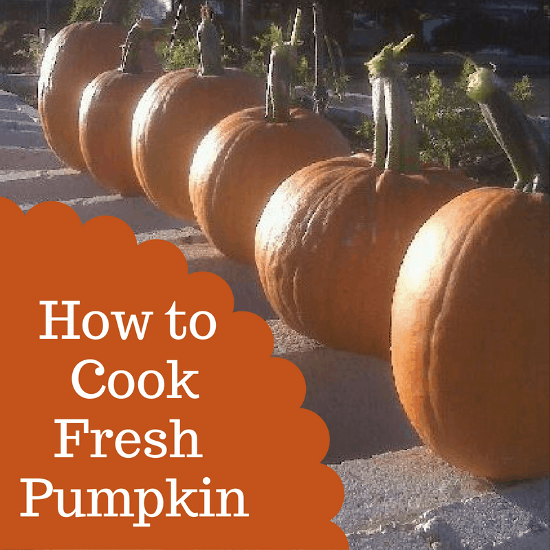 how-to-cookfresh-pumpkin