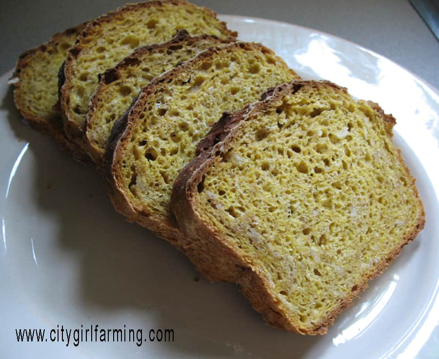 pumpkin oatmeal bread this is a must have i love this bread it s not ...