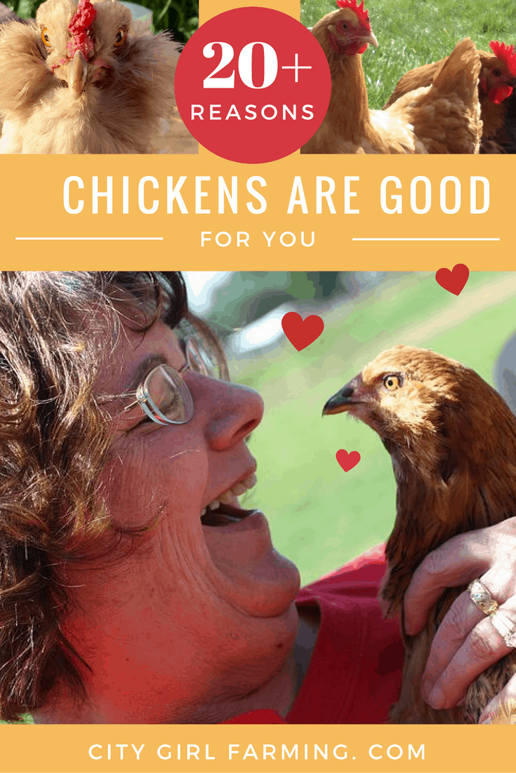 Chickens are good for you! For reals! Here's more than 20 reasons that prove that point!