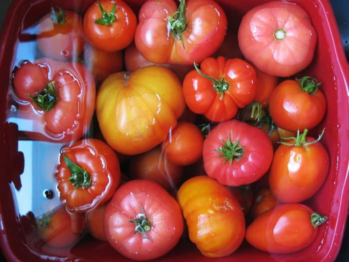 Effortless ways to preserve your tomatoes!