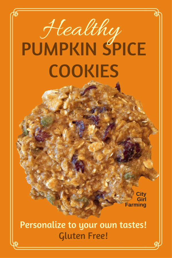 Next time you crave something sweet (but GF) and pumpkin-spicy, here's a great cookie recipe that is easy to personalize to your own cravings and likes: Healthy Pumpkin Spice Cookies. Mmmmm.
