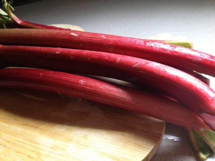 If you love rhubarb, you'll love rhubarb ketchup! And it's easy to make to boot!