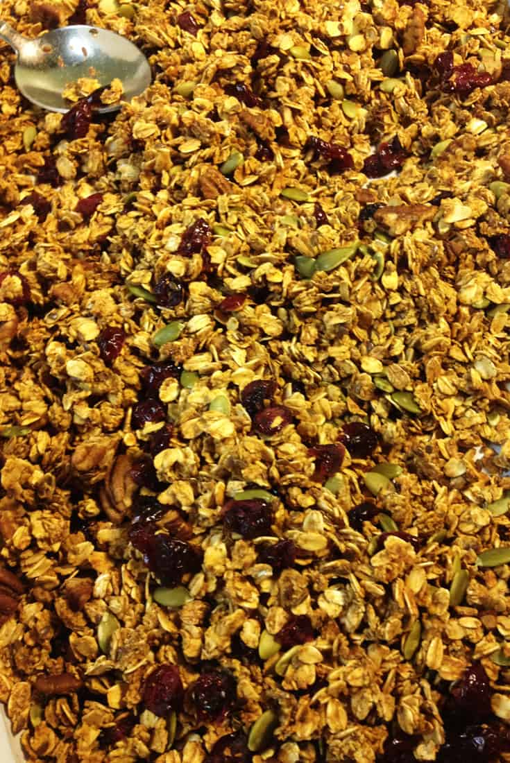 Pumpkin Granola Close Up | City Girl Farming