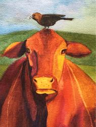Cow & Her Bird