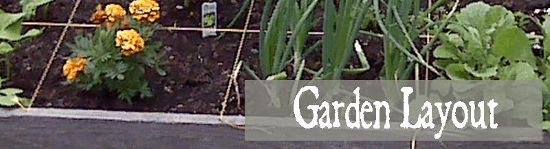 Layout-Garden-800