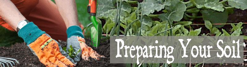 Preparing-soil-800