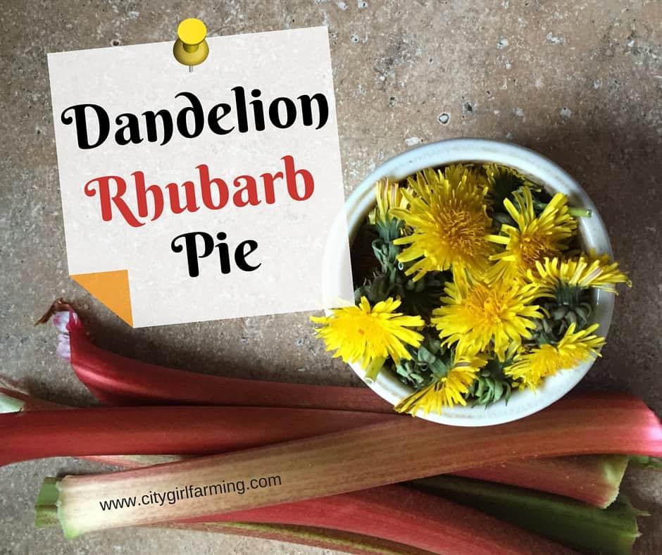 Dandelion Rhubarb Pie