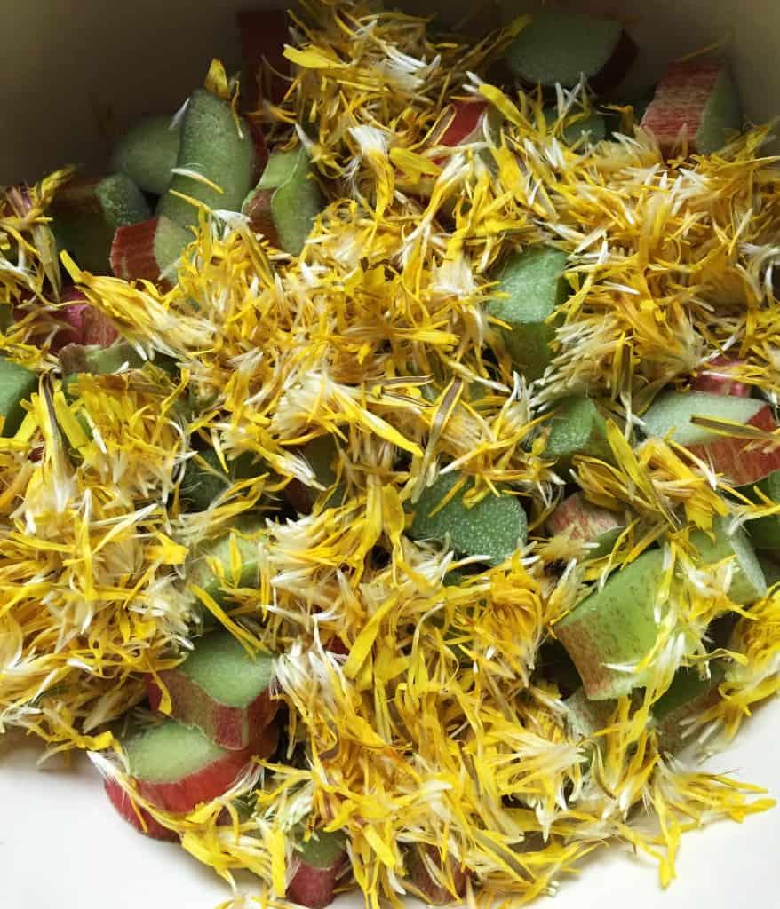 prepped-dandelion-rhubarb-for-pie