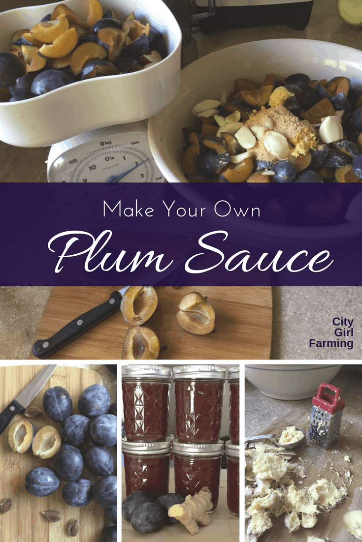 Make your own Asian Plum Sauce. A spicy, sweet sauce that's delicious in stir fry, as a BBQ marinade, with lettuce wraps and more. You'll never get a taste as great as homemade and this recipe isn't difficult.
