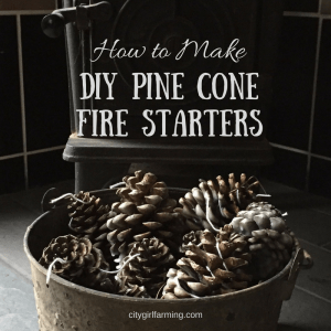 How to Make DIY Pine Cone Fire Starters