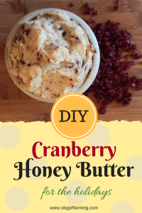 Cranberry Honey Butter Recipe