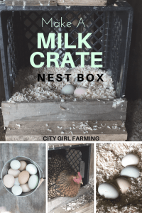 How to Make a Milk Crate Nest Box