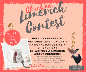 Chicken Limericks?!?