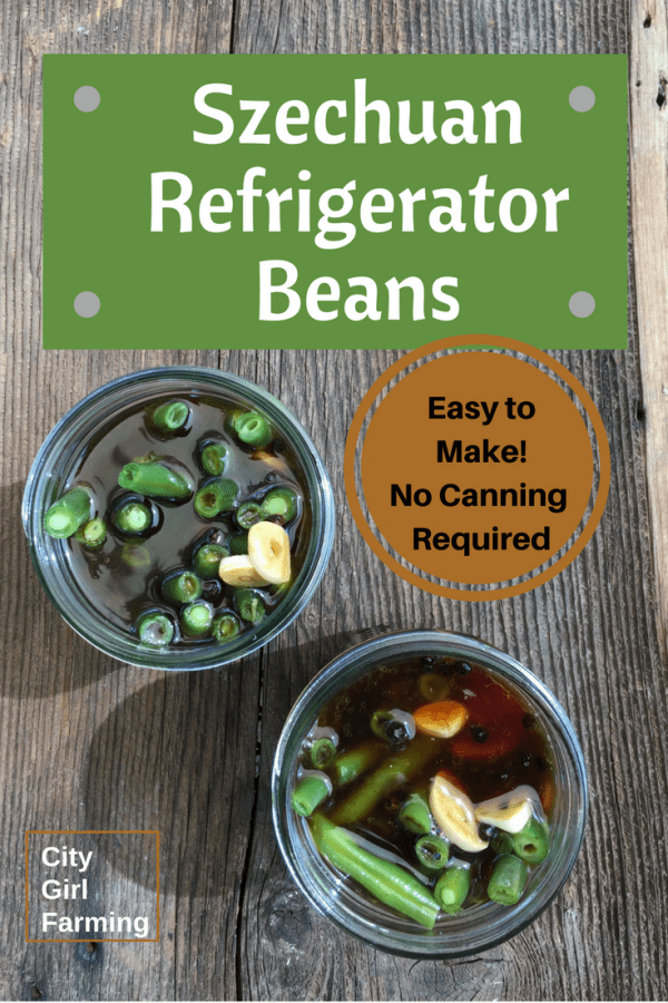 If you love pickle-y-mildly spicy things, you're in for a treat with these Spicy Refrigerator Beans. Mmm. Not only are they addictive, they're super easy to make.