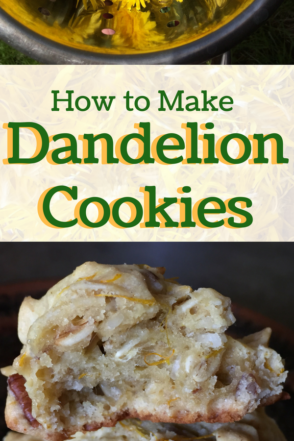 How to Make Dandelion Cookies (with Essential Oils)