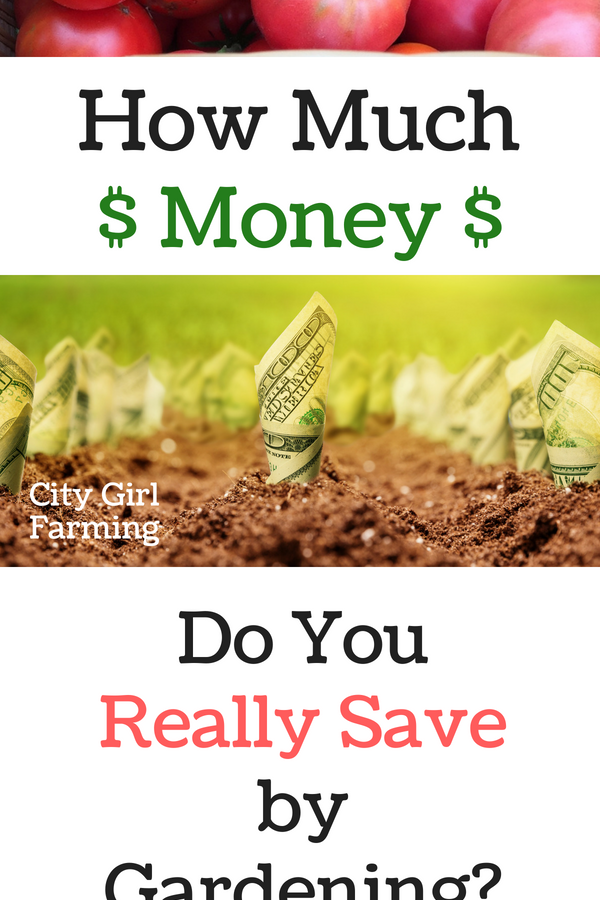 How Much Do you REALLY Save by Gardening?