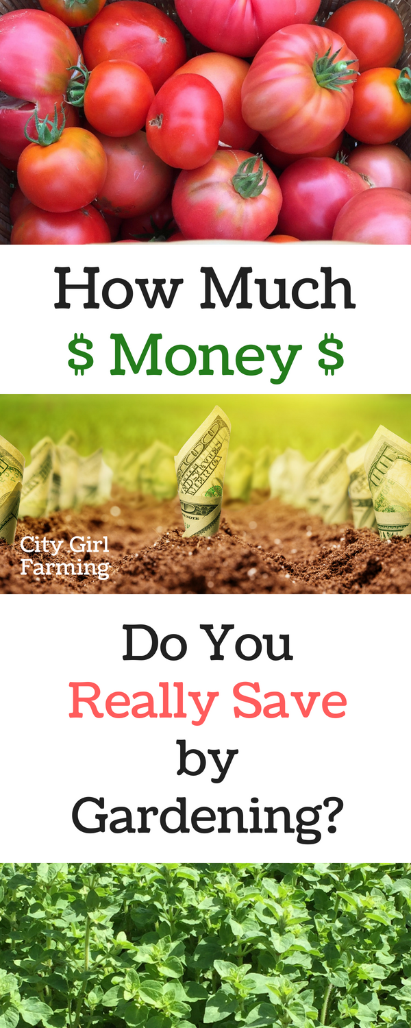 A garden sounds like a great way to save money, right? Maybe until you start buying everything you need to grow your own food....then you might start wondering how much you really save by gardening? I wondered the same thing last year so I decided to keep track and find out just how much I was saving. The results were pretty amazing.