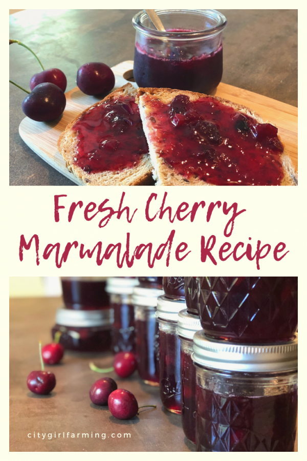 This fresh cherry marmalade is perfect. It's 'fancier' than plain ol' jam or jelly and has a great mix of cherry and orange flavors. This is the stuff you pull out for special guests and important occasions.