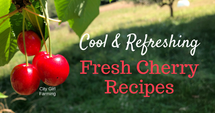 Fresh cherry season is the best. There are so many things you can make with cherries...cool and refreshing recipes that hit the spot. Here's 7 ideas to get you started!