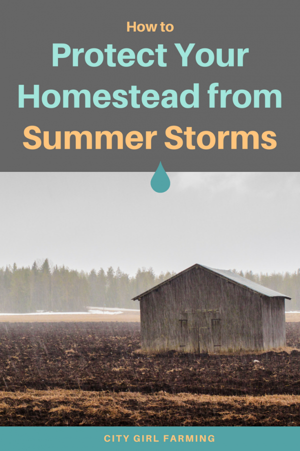 Helpful tips on protecting your homestead during summer storms