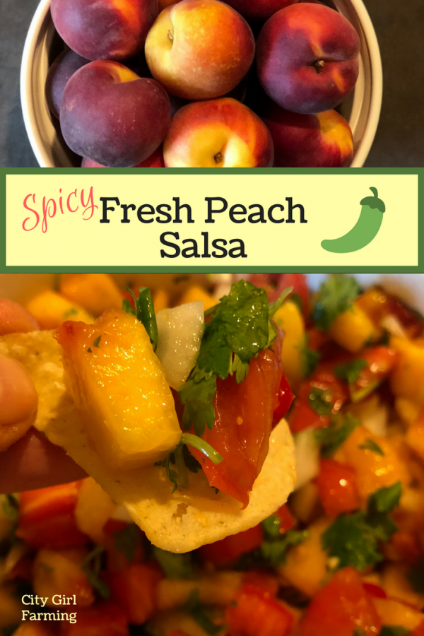 Spicy peach salsa is a perfect peach season recipe. It's a spicy yet sweet take on traditional salsa that's super easy to make and devoured just as quickly. It's a great chip and salsa combo to switch things up a little. But it's also great as an accompaniment to fish, chicken or other meats.
