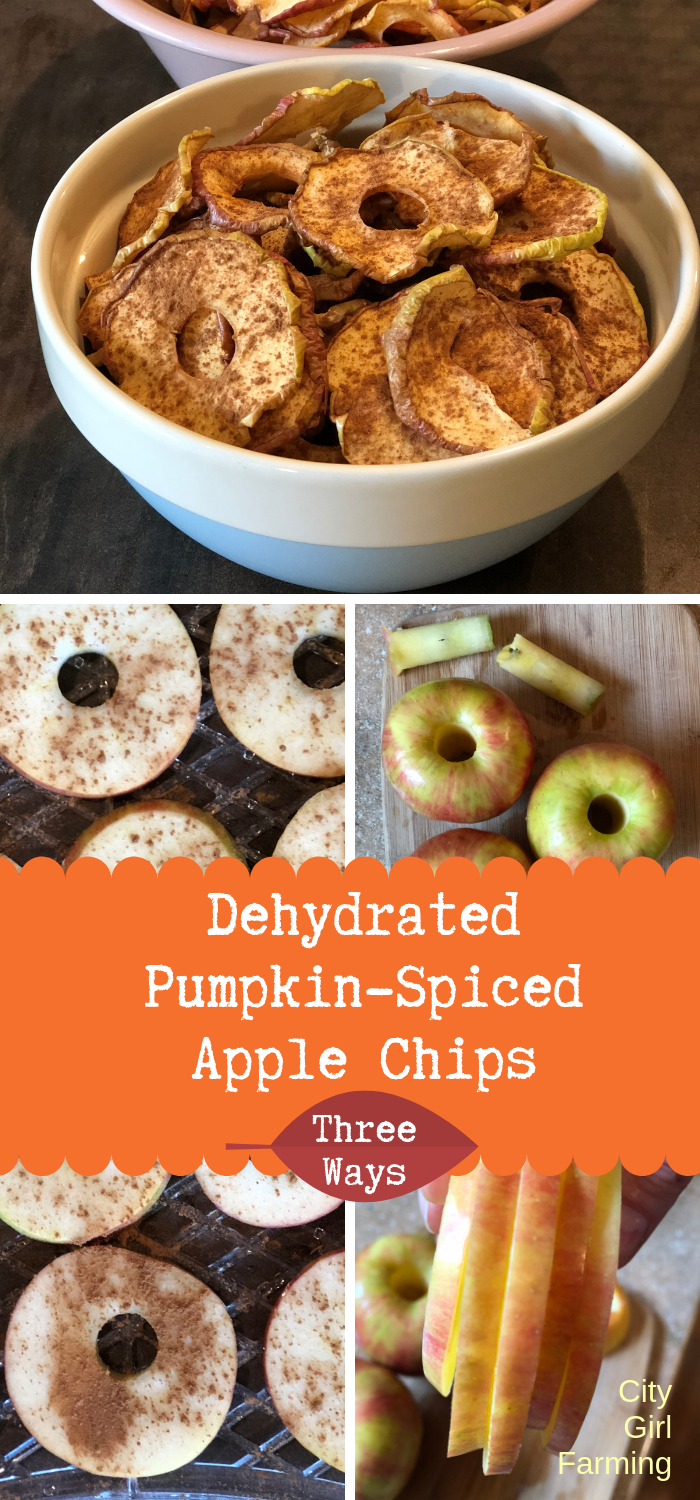 With fall comes an abundance of apples which is a perfect excuse to make dehydrated spiced apples. These apple chips are great plain, but I'm also going to show you how to spice them up a bit (using dried spices or essential oils) to make them even better! Dehydrated spiced apples are one of nature's perfect (healthy) candies. And they're addictive...but they're also easy to make so eat away!