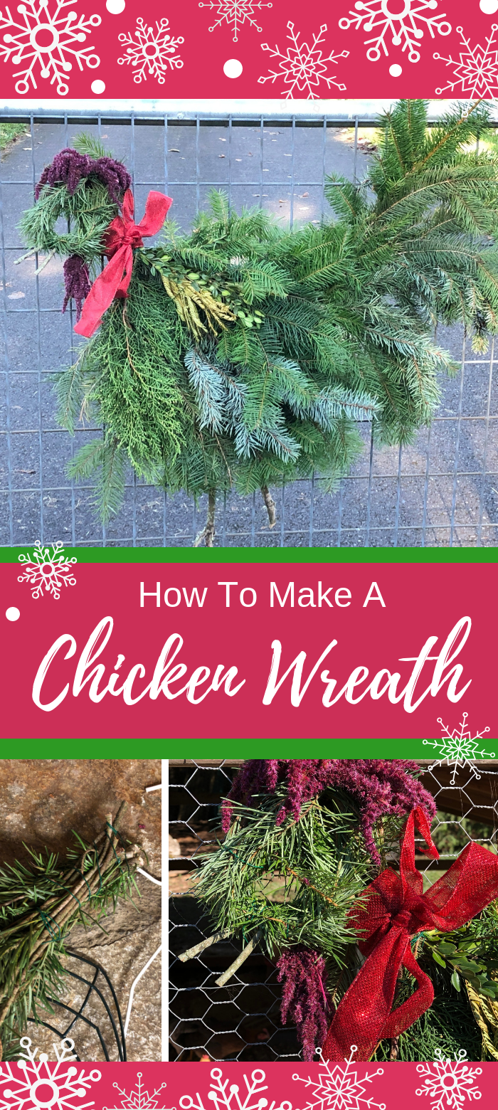 I've wanted to make a chicken wreath for the holidays for years and I just never got around to it! Finally, this year, I made it happen. And you know what? It was super easy, barely took any time at all and was nearly free. How can you go wrong with that? I'll show you how I made my chicken wreaths (a hen and a rooster) and you'll see just how easy it is.