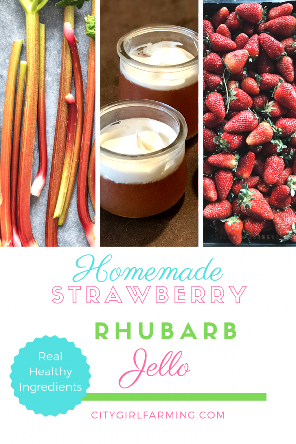 Homemade Strawberry Rhubarb jello is NOT the jello from your childhood. It's WAY better. And it's made with wholesome, real ingredients. Not only that, it's easy to make.